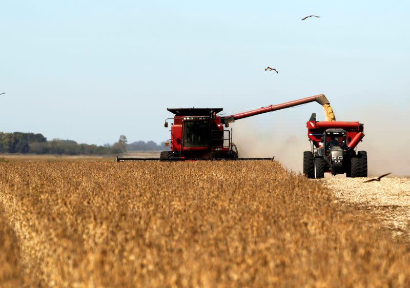 FILE PHOTO: Soybean plants are harvested at a field in the city of Chacabuco, Argentina