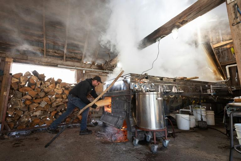 """A worker is filling the evaporator oven with logs at the Constantin Gregoire Sugar shack in Saint-Esprit, Quebec on March 31, 2020.""""For me, this represents a shortfall of between 80,000 and 100,000 dollars,"""" laments Simon Lanoue, a maple syrup producer in Canada's Quebec province hit hard by measures to slow the spread of the new coronavirus"""