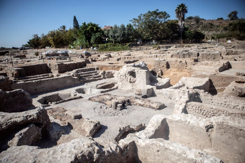 The Israel Antiquities Authority claims discovery of the largest winery from Byzantine period, in Israel