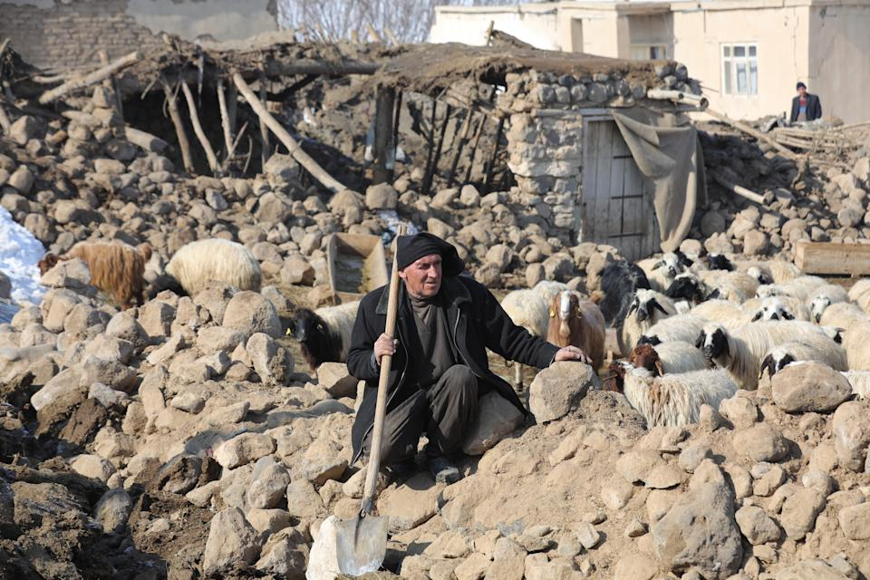 <strong>Quakes ravage Turkey, the Caribbean:</strong> A man watches sheep in an area of collapsed stable building after a magnitude 5.9 earthquake struck near the border with Iran, in Ozpinar neighbourhood of Baskale district in eastern Van province of Turkey on February 24, 2020. Dozens of people were killed in the quake. In the Caribbean too, a temblor caused massive damage to life and property.