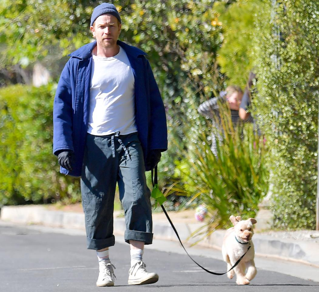 <p>Ewan McGregor steps out in Santa Monica, California, wearing rubber gloves while walking his dog on Saturday.</p>