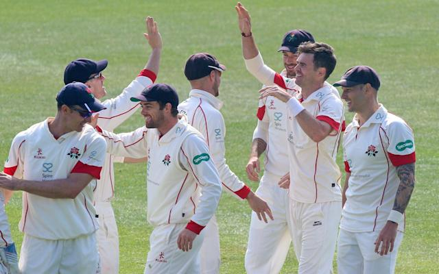 <span>James Anderson celebrates taking the wicket of Tom Westley</span> <span>Credit: REX FEATURES </span>