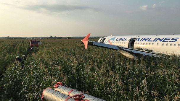PHOTO: The Ural Airlines Airbus 321 passenger plane made an emergency landing in a field near Zhukovsky International Airport near Moscow on Aug. 15, 2019. (Reuters)
