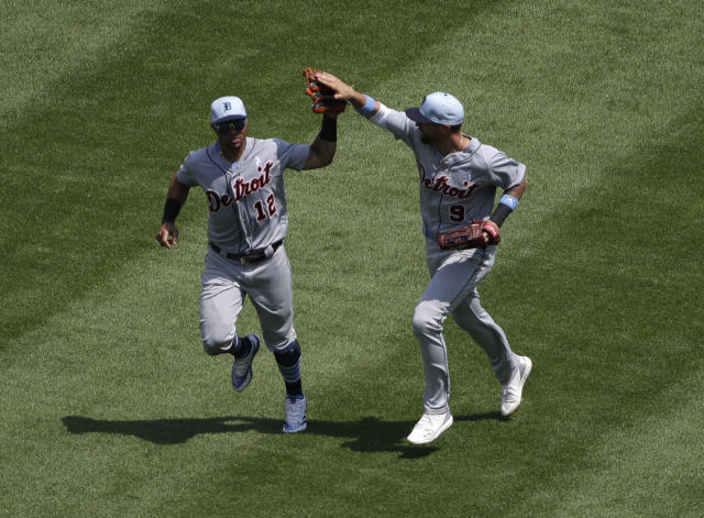 "<a class=""link rapid-noclick-resp"" href=""/mlb/players/8922/"" data-ylk=""slk:Leonys Martin"">Leonys Martin</a> (left) and Nick Castellanos are both having excellent seasons (AP Photo/Nam Y. Huh)"