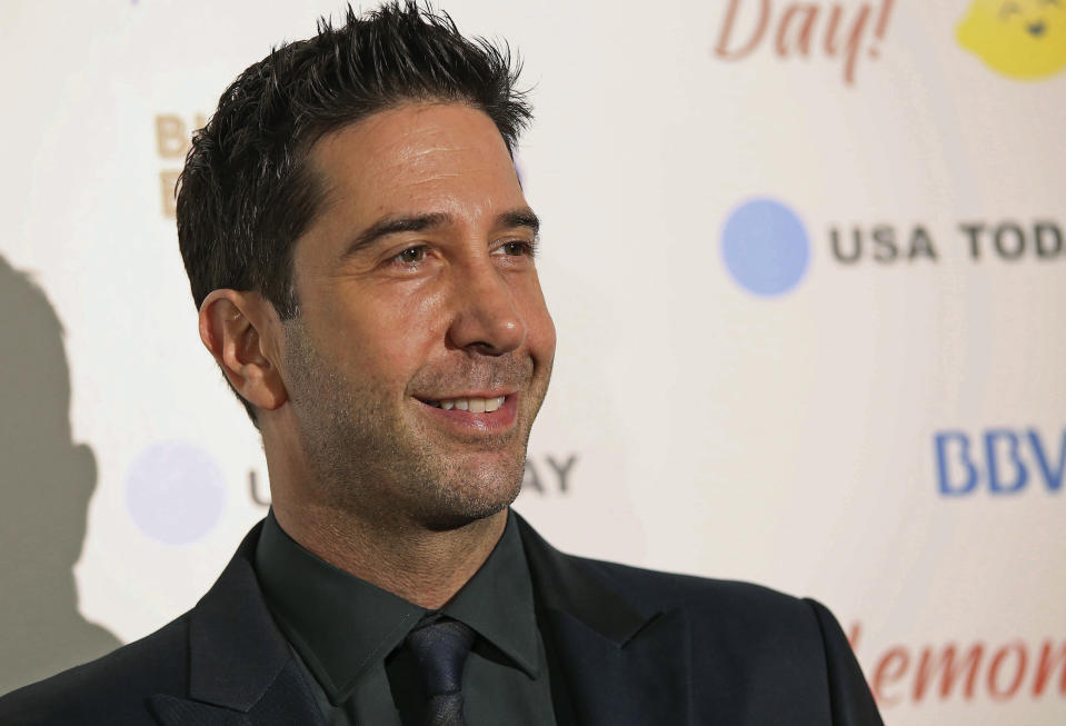 David Schwimmer poses for a photo on the red carpet for the Big Game Big Give event in Houston on Saturday, Feb. 5, 2017. Schwimmer acted as the charitable events emcee. (AP Photo/John Carucci)