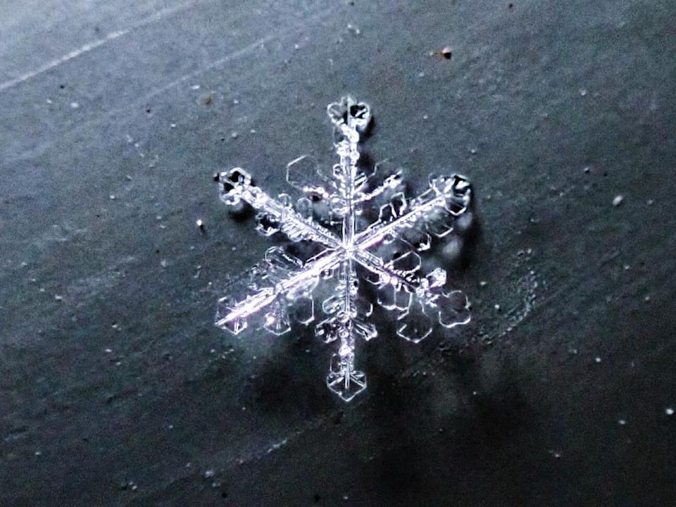 Snowflake 2: Courtesy of Kyle Brittain