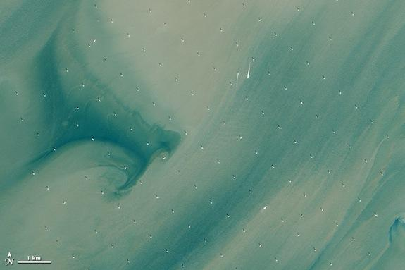 The Landsat 8 satellite captured this image of the London Array, the world's largest offshore wind farm. In this photo, taken on April 28, 2013, the white dots are wind turbines.