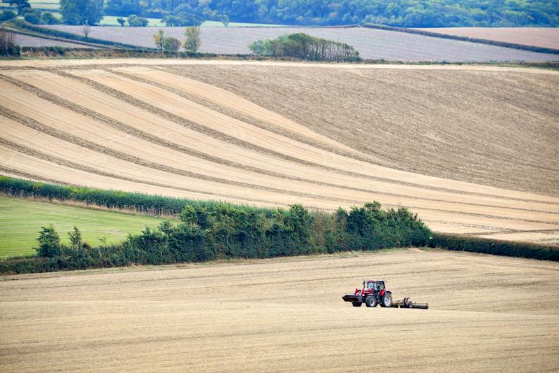 A red tractor in a field in Somerset.