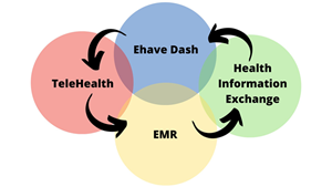The Ehave Dashboard utilizes BlockChain technology to provide better communication among health care providers for better patient outcomes and is compliant with both HIPAA and GDPR standards.