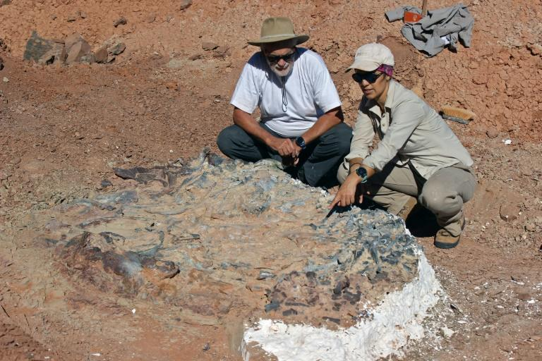 Scientists speculate the site was a former drinking hole at a time of great drought, where the creatures died of weakness
