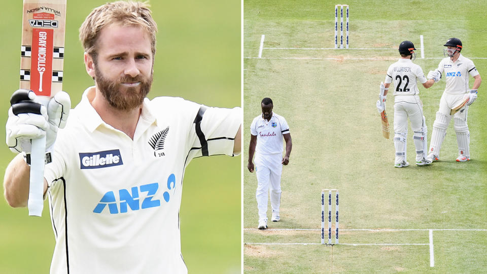 Kane Williamson, pictured here celebrating his double century.
