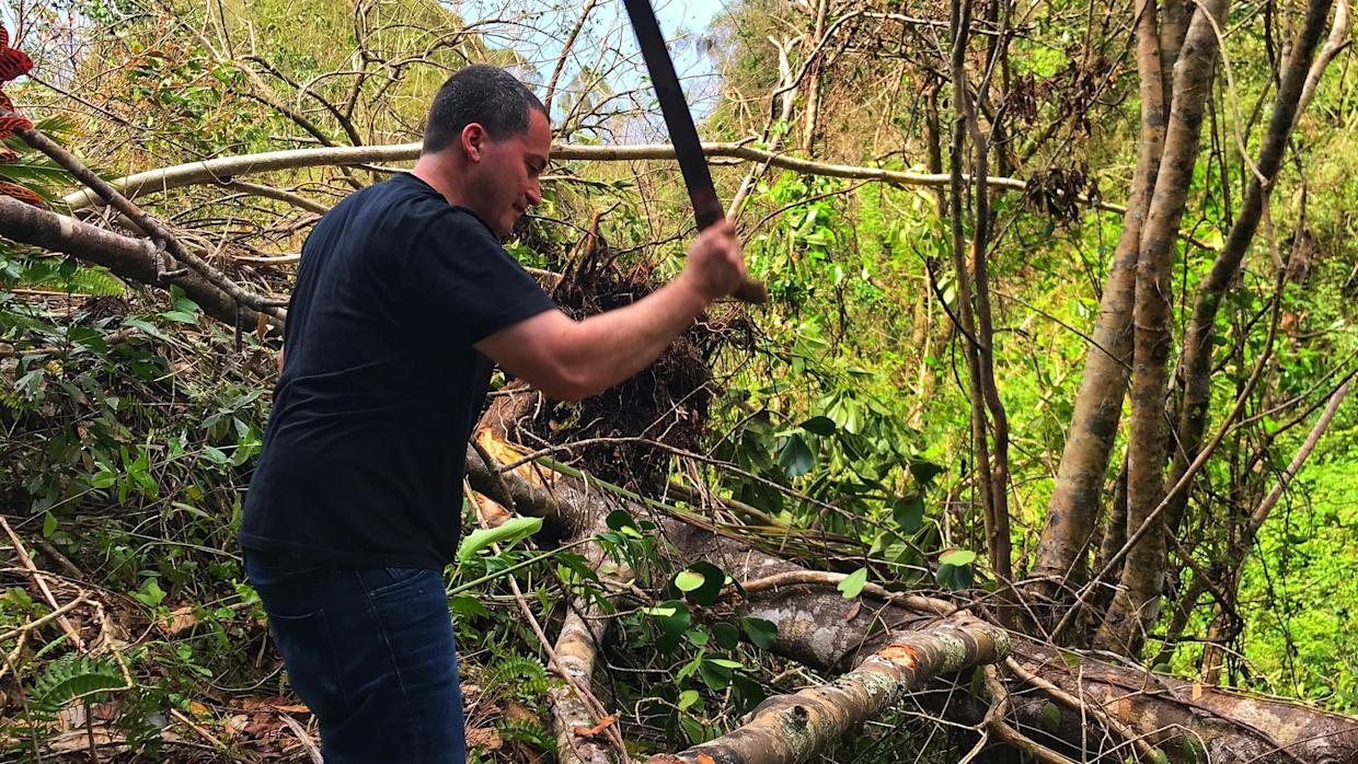 Oscar Vazquez uses a machete to cut branches from trees knocked over by Hurricane Maria at his family's farm in Hatillo, Puerto Rico. (Photo: Caitlin Dickson/Yahoo News)