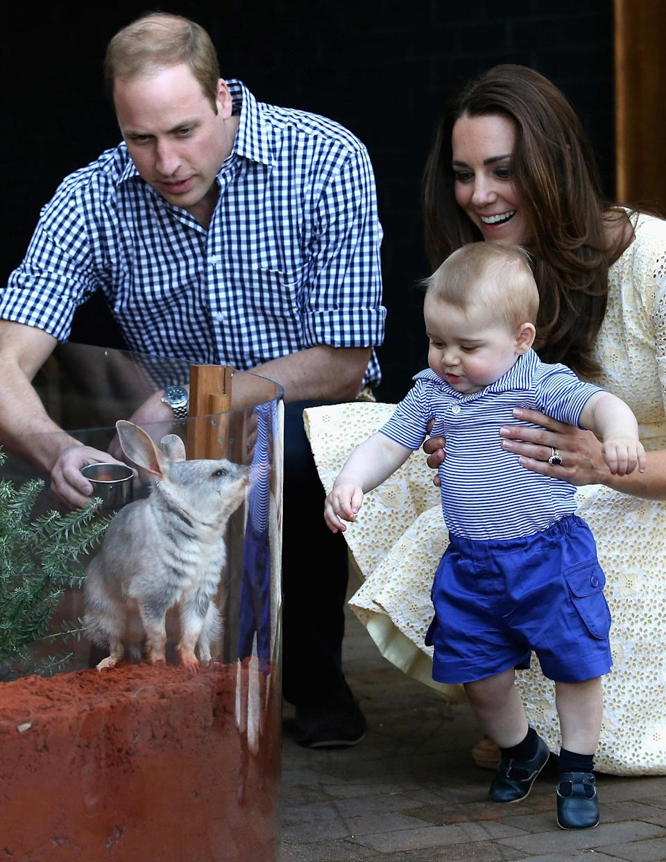 Kate and William visited Taronga Zoo with Prince George in 2014 (PA)