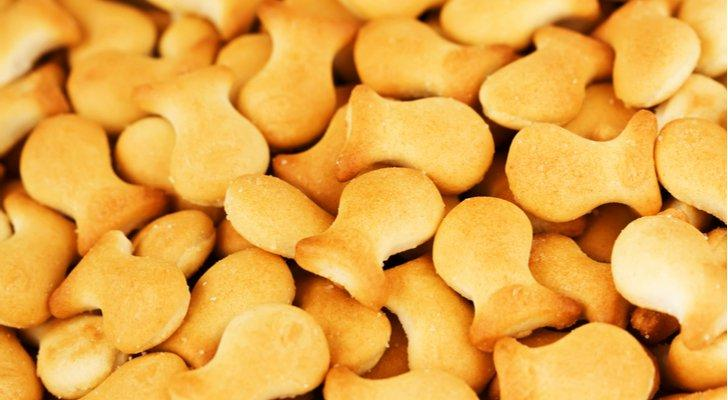 Campbell Announces Goldfish Recall on Salmonella Risk