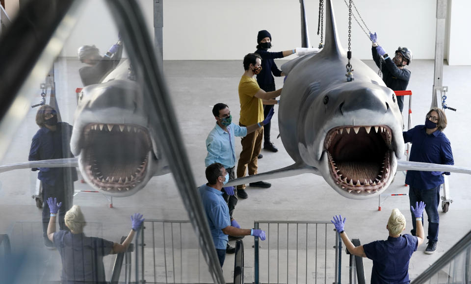 """A fiberglass replica of Bruce, the shark featured in Steven Spielberg's classic 1975 film """"Jaws,"""" is raised to a suspended position for display at the new Academy of Museum of Motion Pictures, Friday, Nov. 20, 2020, in Los Angeles. The museum celebrating the art and science of movies is scheduled to open on April 30, 2021. (AP Photo/Chris Pizzello)"""