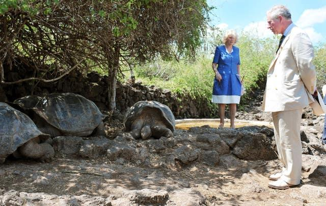 The Prince of Wales and the Duchess of Cornwall come face to face with giant tortoises at the Galapagos National Park
