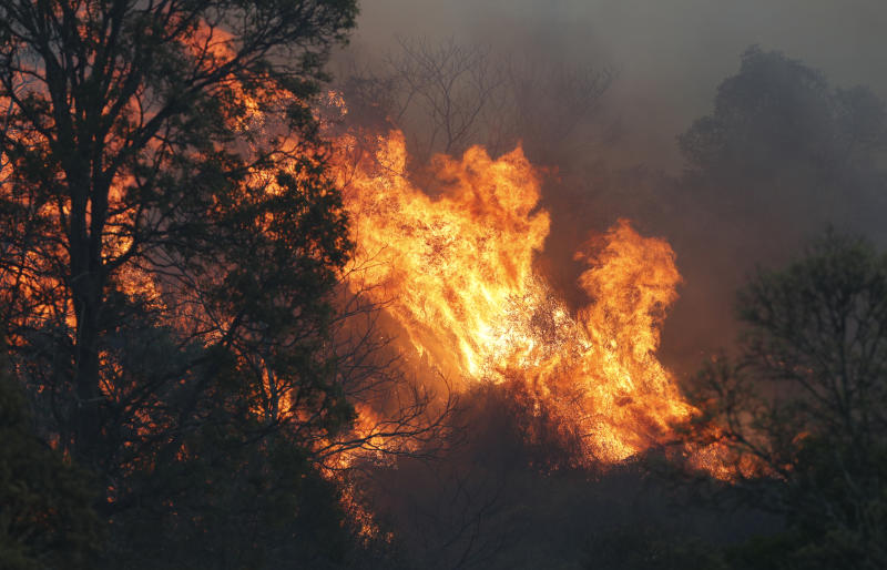Bushfire near the rural town of Canungra in the Scenic Rim region of South East Queensland,