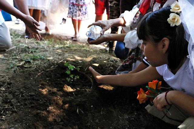 A group of environmental activists plant a tree.
