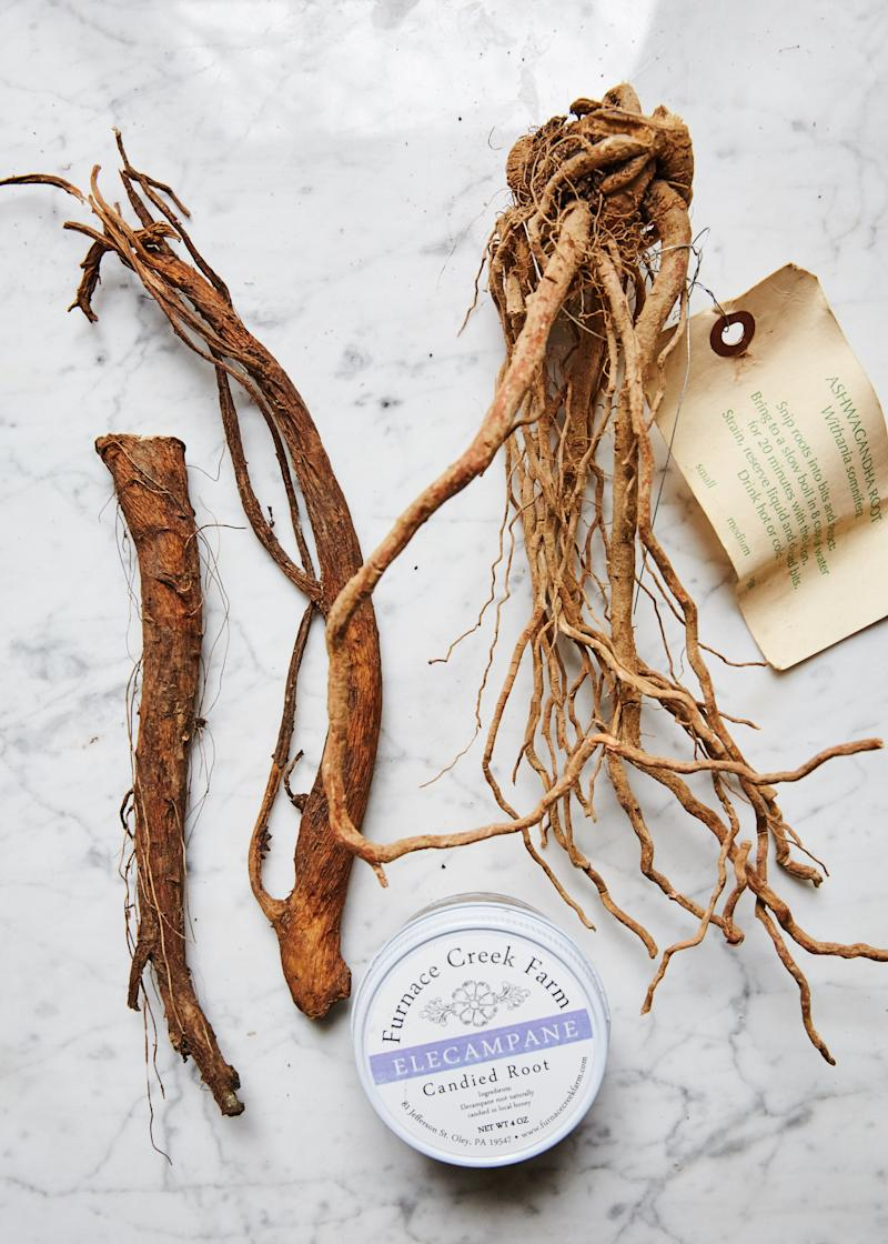 Ashwagandha Couldn't Cure My Burnout Lifestyle—Here's What Did