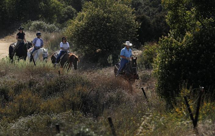 "Head trail guide Cole Wade leads a group of riders near the Los Angeles Horseback Riding ranch in Topanga Canyon in July 2019. <span class=""copyright"">(Francine Orr / Los Angeles Times)</span>"