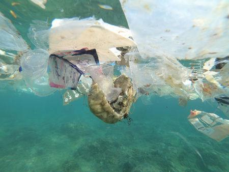 Debris and plastic litter found by Tangaroa Blue, an Australian Marine debris initiative, on Christmas Island. Source: Reuters