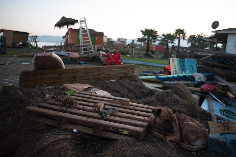 Debris litters a beach in Concon, Chile on September 17, 2015, after a massive earthquake hit the area (AFP Photo/Vladimir Rodas)