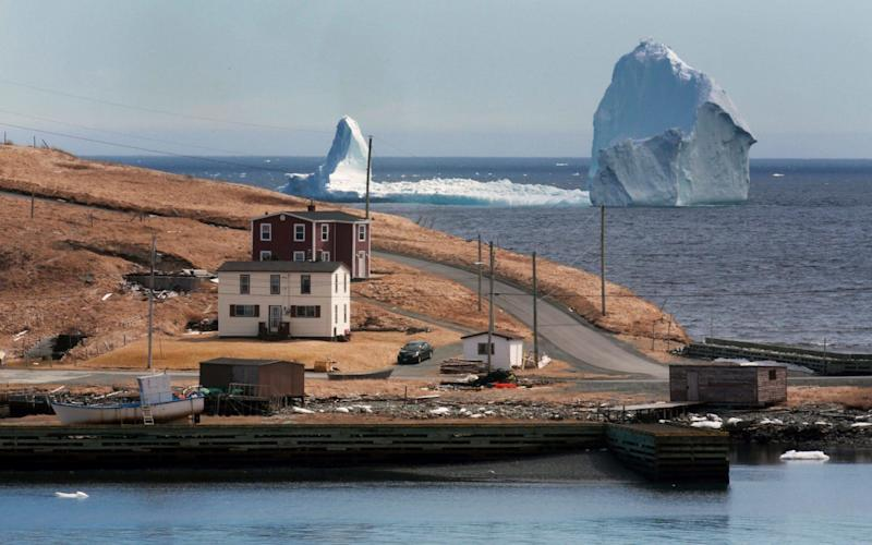 A large iceberg is visible from the shore in Ferryland - The Canadian Press