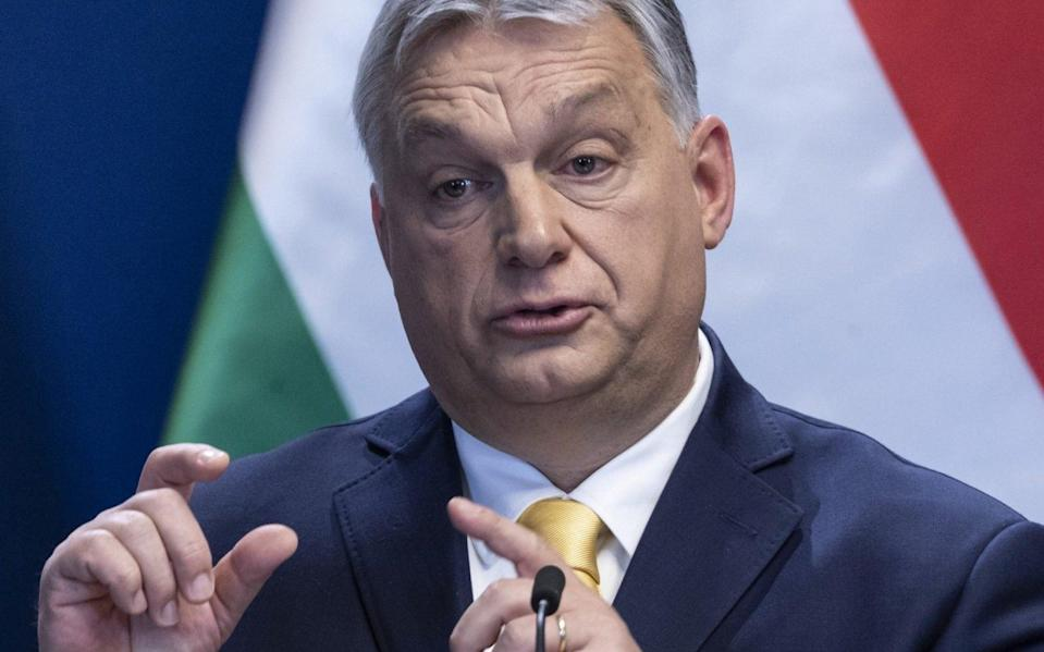 Victor Orban, Hungary's prime minister, said that fertility was of 'strategic importance' - REX
