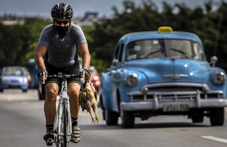 A cyclist wearing a mask as a precaution against the spread of the new coronavirus carries a chicken in his hand while he pedals his bicycle in Havana, Cuba, Sunday, Oct. 11, 2020. (AP Photo/Ramon Espinosa)