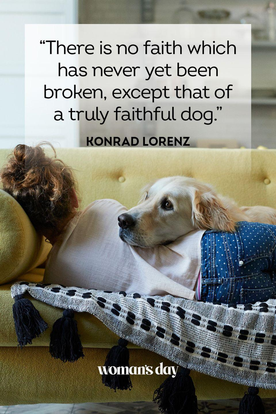 """<p>""""There is no faith which has never yet been broken, except that of a truly faithful dog."""" </p>"""