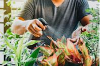 <p>And if you're new to gardening, the sooner you can plan out your at-home garden, the better! The best part? Gardening at home means you have something to look forward to all season long (and beyond). Shop for some fun seeds and gardening accessories ahead of time to make sure you're ready to make the most of planting season.</p>