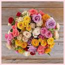"""$69, The Bouqs Co.. <a href=""""https://bouqs.com/flowers/roses-mothers-day/assorted-spray-roses?sku=10257002"""" rel=""""nofollow noopener"""" target=""""_blank"""" data-ylk=""""slk:Get it now!"""" class=""""link rapid-noclick-resp"""">Get it now!</a>"""