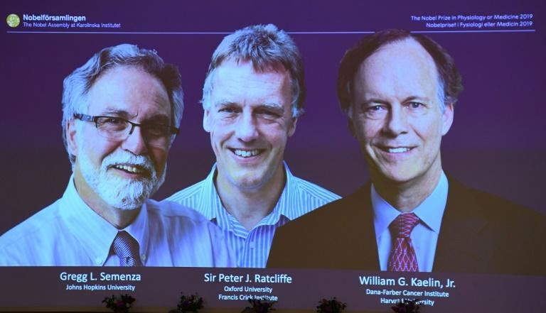 Gregg Semenza, Peter Ratcliffe and William Kaelin won the Nobel Medicine Prize for discoveries about cells and oxygen (AFP Photo/Jonathan NACKSTRAND)