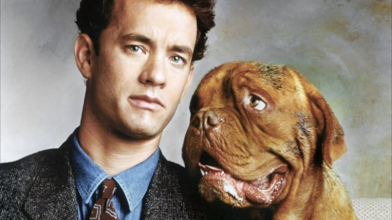 'Turner and Hooch'. (Credit: Buena Vista Pictures)