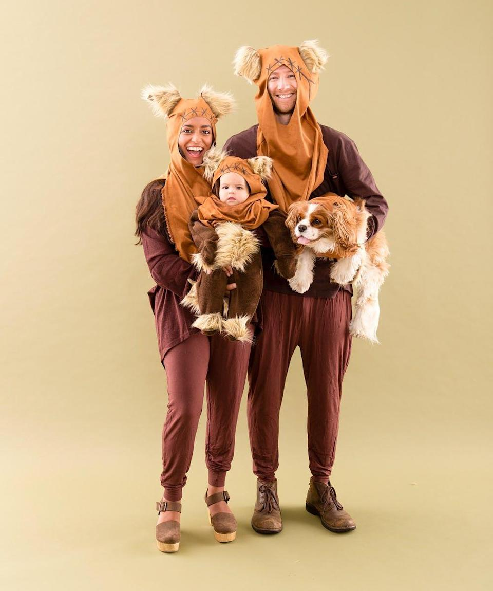 """<p>With faux fur and a bit of baggy clothing, you'll be well on your way to the most hilarious, '<a href=""""https://www.countryliving.com/diy-crafts/g28559139/80s-costumes/"""" rel=""""nofollow noopener"""" target=""""_blank"""" data-ylk=""""slk:80s"""" class=""""link rapid-noclick-resp"""">80s</a>-inspired costume of them all. Bonus points if you involve your family pup.</p><p><strong>Get the tutorial at <a href=""""https://www.brit.co/80s-family-halloween-costumes/"""" rel=""""nofollow noopener"""" target=""""_blank"""" data-ylk=""""slk:Brit + Co."""" class=""""link rapid-noclick-resp"""">Brit + Co.</a> </strong></p><p><strong><a class=""""link rapid-noclick-resp"""" href=""""https://www.amazon.com/Barcelonetta-Craft-Supply-Costume-Decoration/dp/B07WHG585L?tag=syn-yahoo-20&ascsubtag=%5Bartid%7C10050.g.29074815%5Bsrc%7Cyahoo-us"""" rel=""""nofollow noopener"""" target=""""_blank"""" data-ylk=""""slk:SHOP CRAFTING FAUX FUR"""">SHOP CRAFTING FAUX FUR</a></strong></p>"""