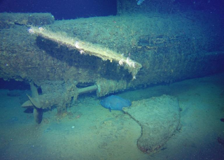 The wreckage of Australia's first submarine HMAS AE1, pictured from aboard the research vessel Petrel