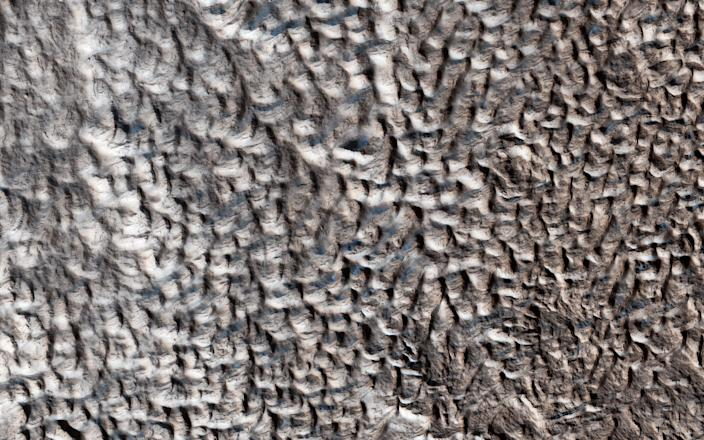 "This surface texture of interconnected ridges and troughs is found throughout the mid-latitude regions of Mars. <p class=""copyright"">NASA/JPL-Caltech/University of Arizona</p>"