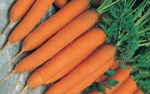 carrots - Credit: Mr Fothergill's