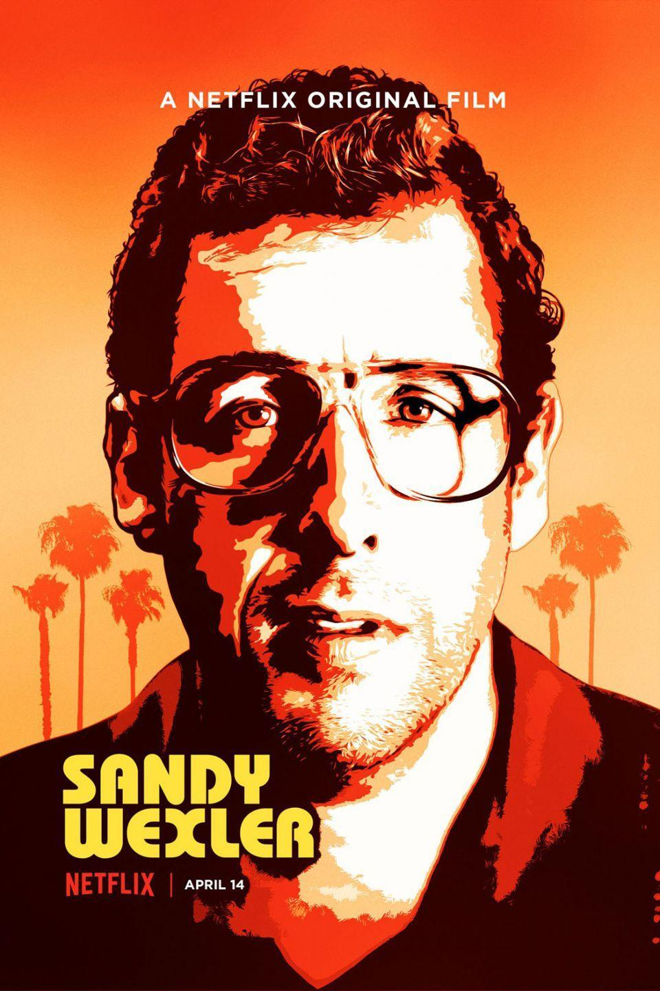 <p><strong>Role: </strong>Sandy Wexler </p><p>This is basically one entire inside joke about Sandler's real-life manager Sandy Wernick that approximately .0000000000000000000000001 percent of the world's population could possibly find funny.</p>
