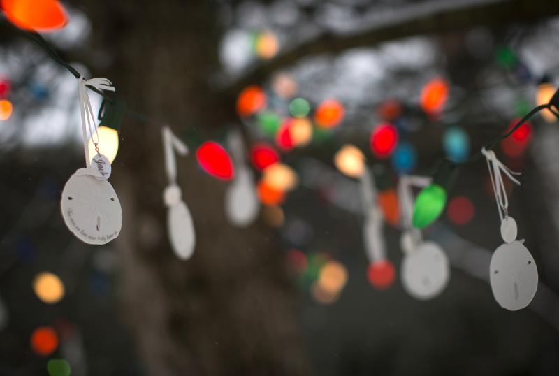 A sand dollar bearing the name of Sandy Hook Elementary School shooting victim Jack Pinto hangs from a tree as part of a memorial in the Sandy Hook section of Newtown, Connecticut