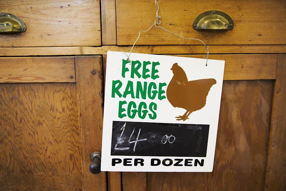 """<p>""""Free-range chicken"""" might conjure up an image of chickens happily running around a large farm before meeting their fate. Unfortunately, this isn't usually the case. According to Certified Humane, the only requirement to use the word """"free-range"""" is that the <a href=""""https://certifiedhumane.org/free-range-and-pasture-raised-officially-defined-by-hfac-for-certified-humane-label/"""" rel=""""nofollow noopener"""" target=""""_blank"""" data-ylk=""""slk:farm gives chickens an undefined amount of access"""" class=""""link rapid-noclick-resp"""">farm gives chickens an undefined amount of access</a> to an outdoor area. For some, this means just having a """"pop hole"""" where they can't even get their full bodies outside. Basically, it's not always as good as it sounds.</p>"""
