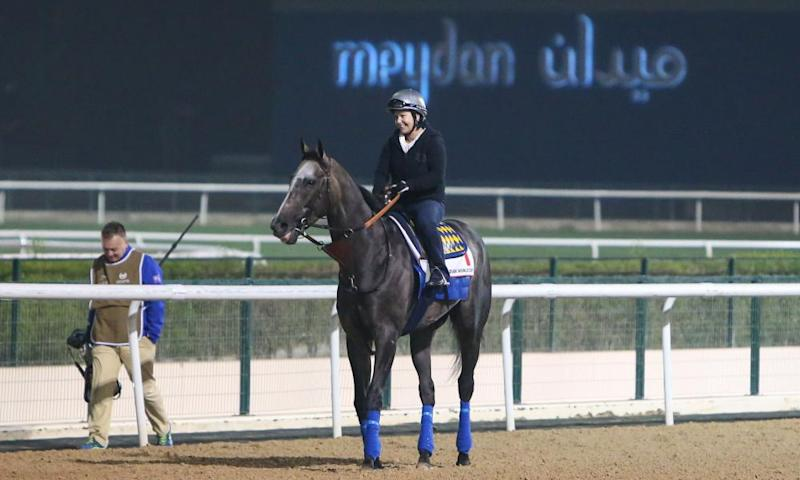 Arrogate completes his morning trackwork at Meydan racecourse in Dubai.