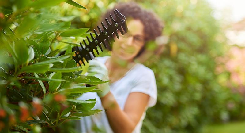 """This top-rated hedge trimmer from Argos has been hailed a """"game changer' by gardeners. (Getty Images)"""