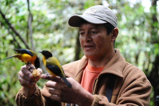 Angel Paz traded in his farmer's rifle for binoculars after realizing that tourists would pay large sums to view birds