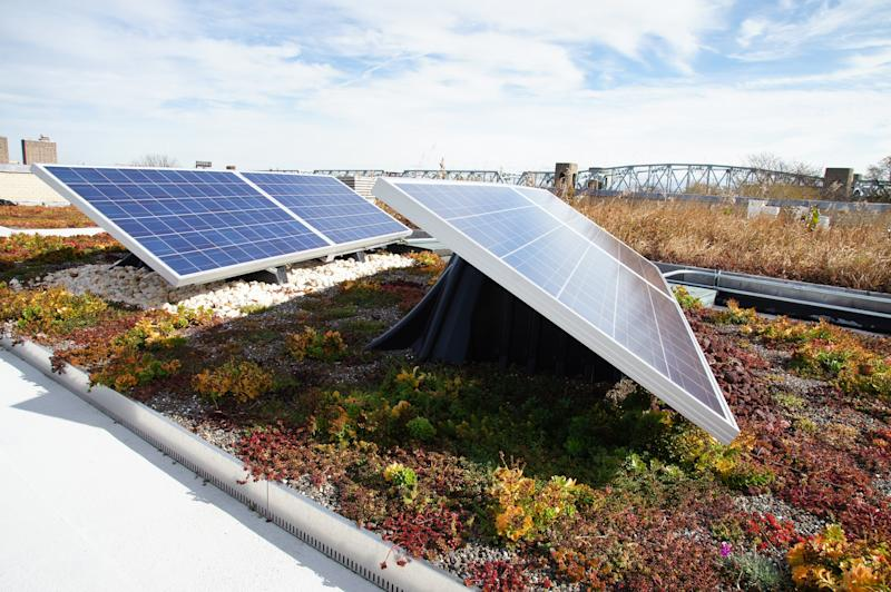 Green Roof Technology Becomes North America's Premier Supplier of Solar Green Roofs