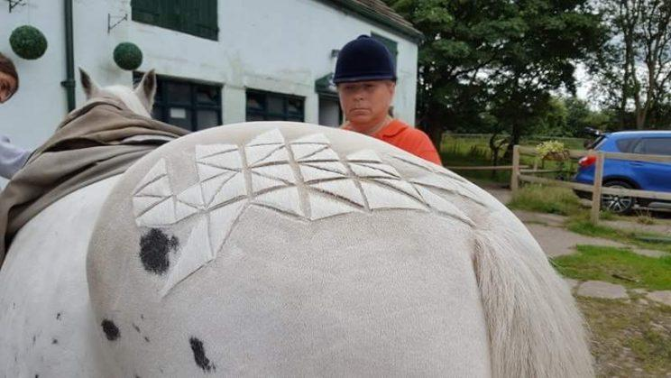 Geometric prints add gorgeous dimension to the horse's hair. (Photo: Facebook)