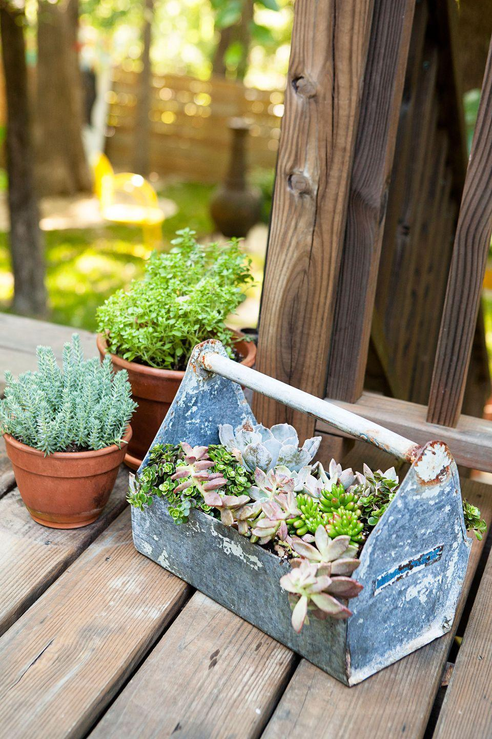 """<p>Just about anything can hold plants if it's got sufficient drainage (i.e., a few holes drilled in the bottom). The handle on this <a href=""""https://www.goodhousekeeping.com/home/gardening/advice/g1007/backyard-decorating/"""" rel=""""nofollow noopener"""" target=""""_blank"""" data-ylk=""""slk:vintage toolbox"""" class=""""link rapid-noclick-resp"""">vintage toolbox</a> makes relocating succulents to a shadier spot a snap.</p>"""