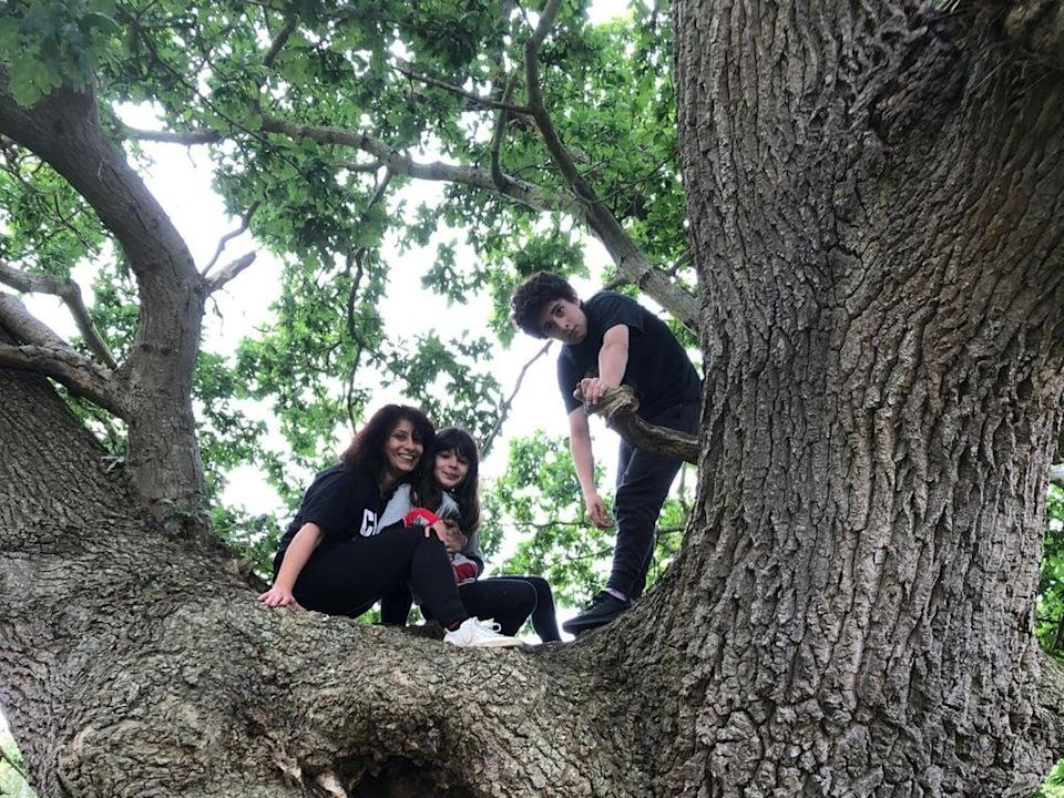 'We climbed a huge oak tree in Gallows Field – even my teenager looked up from his phone'  (Shaparak Khorsandi)