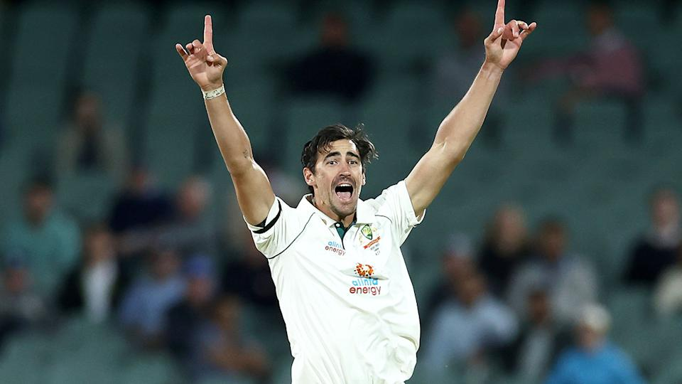Pictured here, Mitchell Starc appeals for a wicket against India in Adelaide.