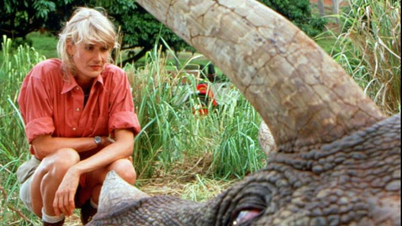"""NBC123 4/4/95 -- """"JURASSIC PARK"""" - 'NBC SUNDAY NIGHT MOVIE'-- TELECAST DATE: Sunday, May 7 (8-11 p.m. ET). -- PICTURED: Laura Dern -- JURASSIC PARK -- The broadcast premiere of the biggest grossing film of all time, Steven Spielberg's """"Jurassic Park,"""" stars Sam Neill and Laura Dern as paleontologists who visit a billionare developer's (Richard Attenborough) remarkable Jurassic Park, where wondrous dinosaurs -- genetically created from fossilized DNA samples -- roam the land. When the creatures break out of captivity, they go on a wild rampage through the park, leading the visitors on a terrifying journey for survival. Jeff Goldblum, Ariana Richards and Joseph Mazzello also star. -- PHOTO: Murray Close."""